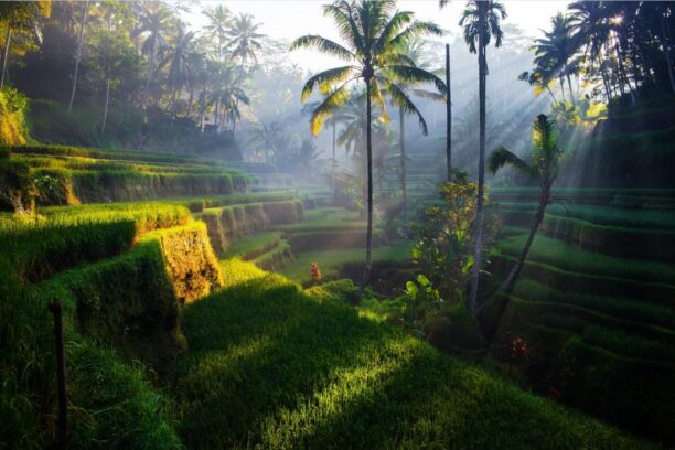 Indonesia - a country full of diversity