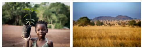 Africa Environment